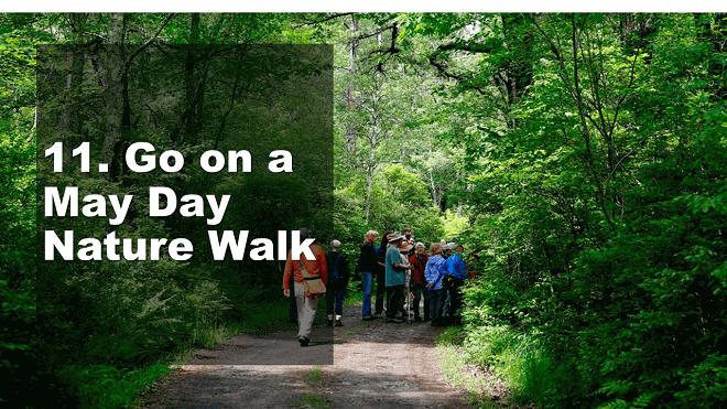 Go on a May Day Nature Walk - How to Celebrate May Day - Mr. BD Guide